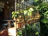 Appartamento con Giardino Roma torrino