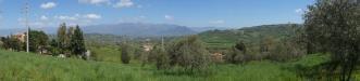 Terreno a Caiazzo in via latina - 04