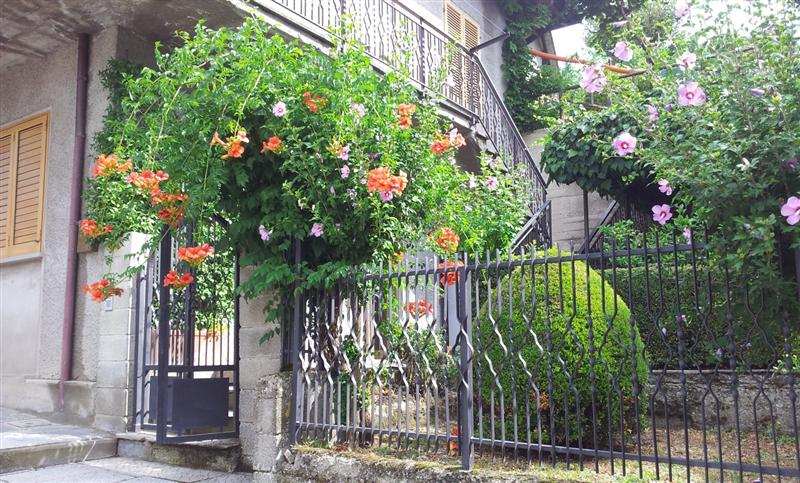 Villa con giardino a Bibbiena - freggina - 01