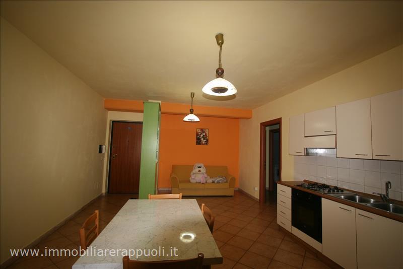 Appartamento con box a Foiano della Chiana - 01