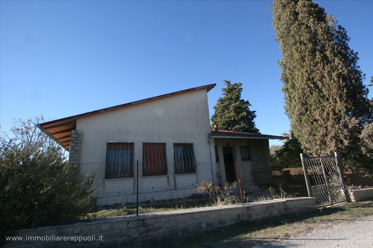 Casa indipendente con giardino a Torrita di Siena - 01