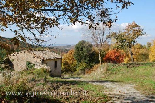 Rustico con giardino a Castiglione d'Orcia - vivo d'orcia - 01