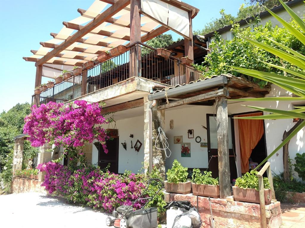 Casa indipendente con giardino Sant'Angelo d'Alife san michele - 01
