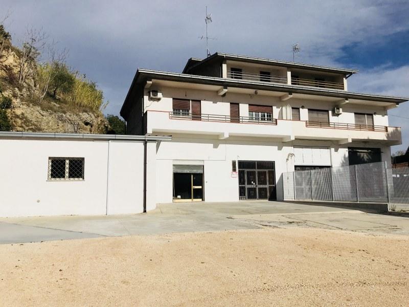 Affitto locale commerciale a Arpino - 01