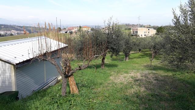 Terreno a Manoppello - cappuccini - 01