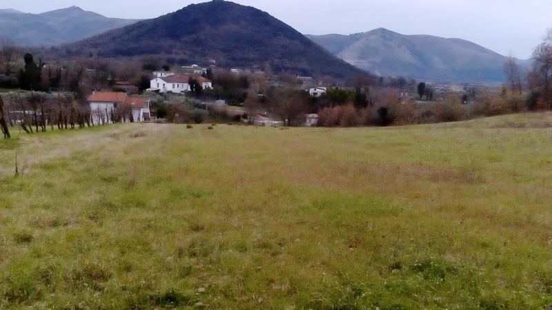 Terreno a Piana di Monte Verna in strada statale 87 sannitica - 01