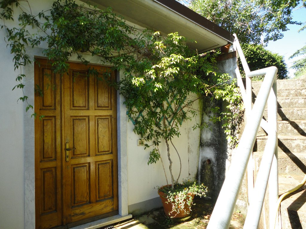 Villa con giardino a Carrara - ficola - 01