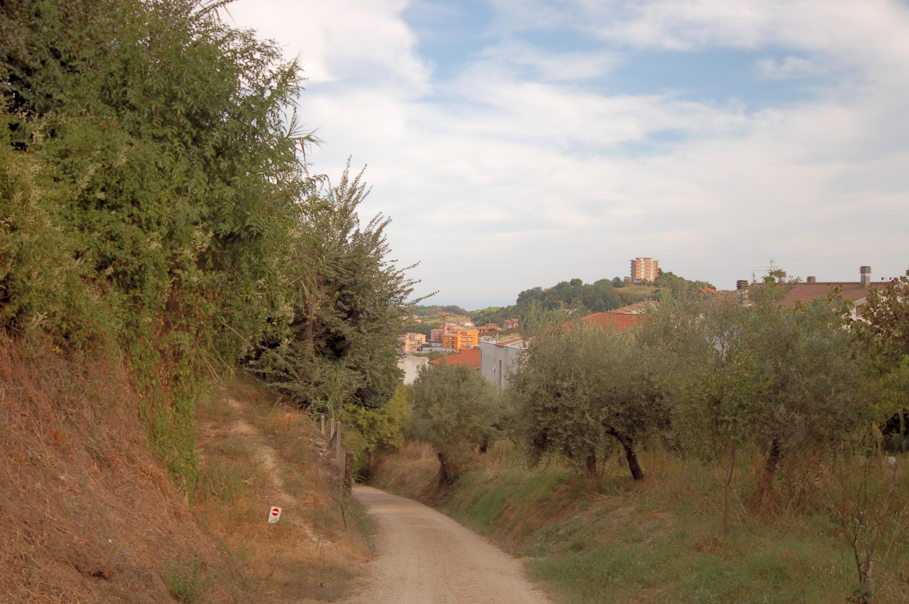Terreno a Acquaviva Picena - collinare (esposizione verso il mare) - 01