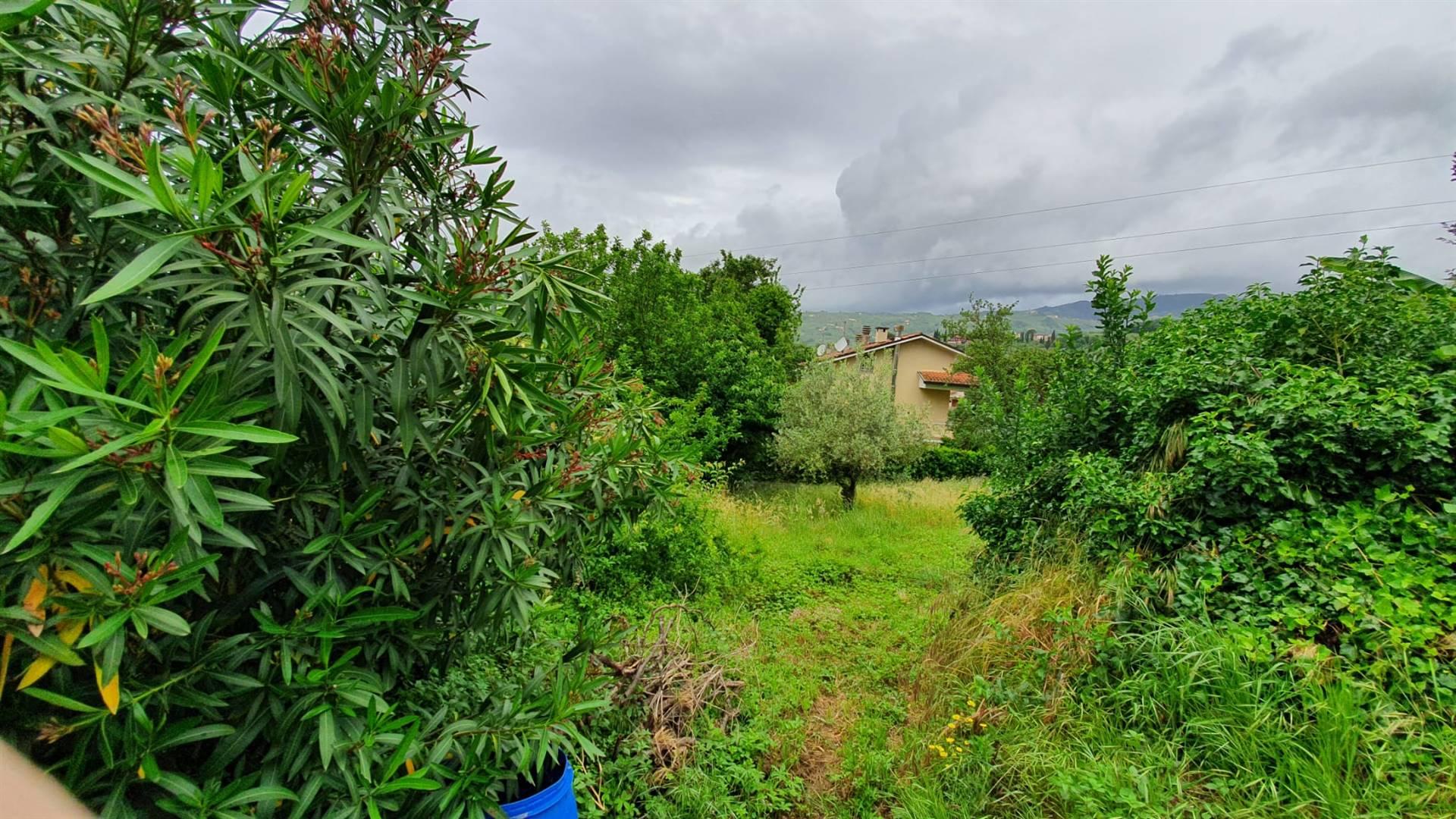 Terreno Edificabile in vendita, Montecatini-Terme biscolla