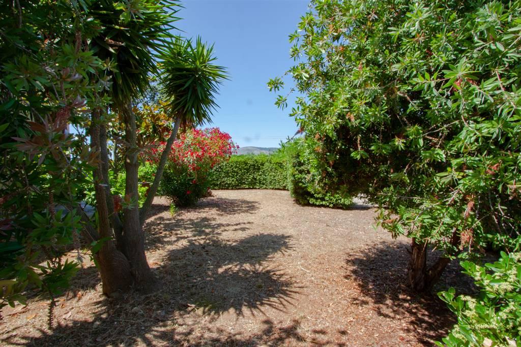 Appartamento con giardino Fondi salto di - 01, esterno