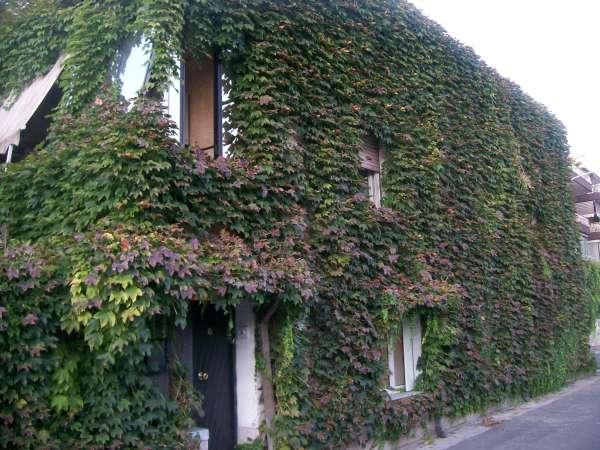 Villa a Casagiove - 01