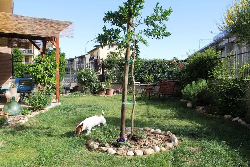 Vende appartamento con giardino a Allerona