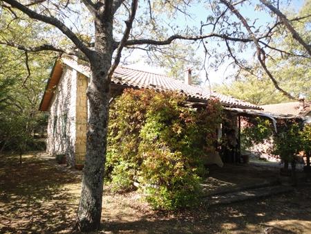 Casa indipendente con giardino a Montegabbione - 01, ESTERNO FRONTALE