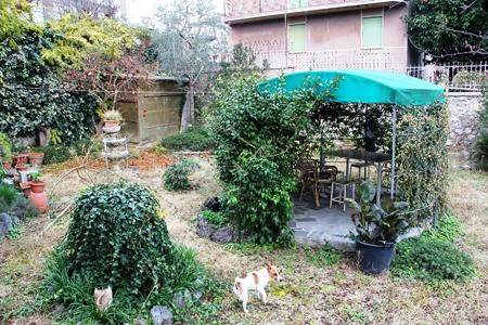 Casa indipendente con giardino a Orvieto - 01