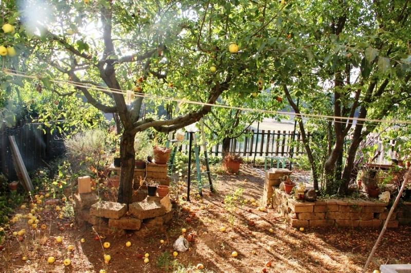 Casa indipendente con giardino a Porano - 01