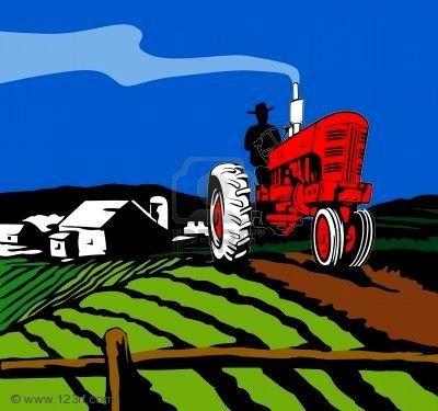 Terreno Agricolo a Adria - 01