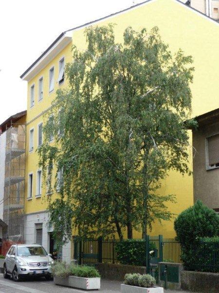 Appartamento Monolocale a Cinisello Balsamo - 01