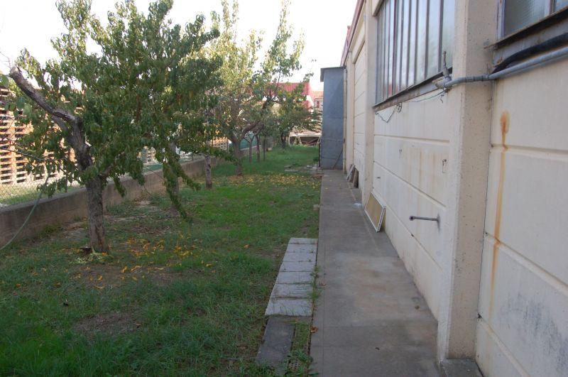 Attività commerciale con giardino a Rosignano Marittimo