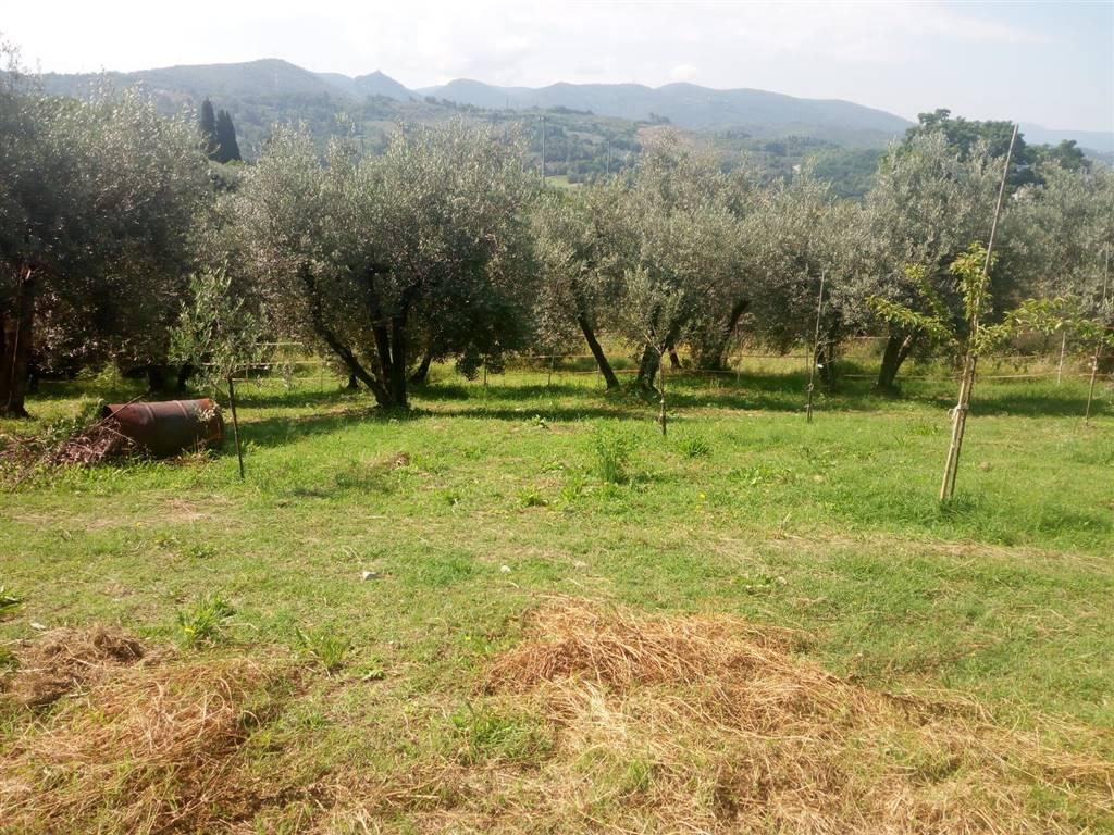 Terreno Edificabile in vendita, Terni semiperiferia periferia