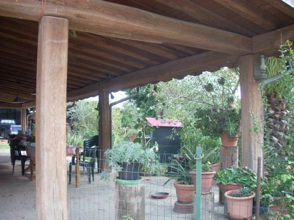 Rustico con giardino a Canino - 01, Foto