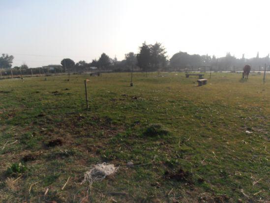 Terreno Agricolo a Tarquinia - 01, tarquinia terreno agricolo