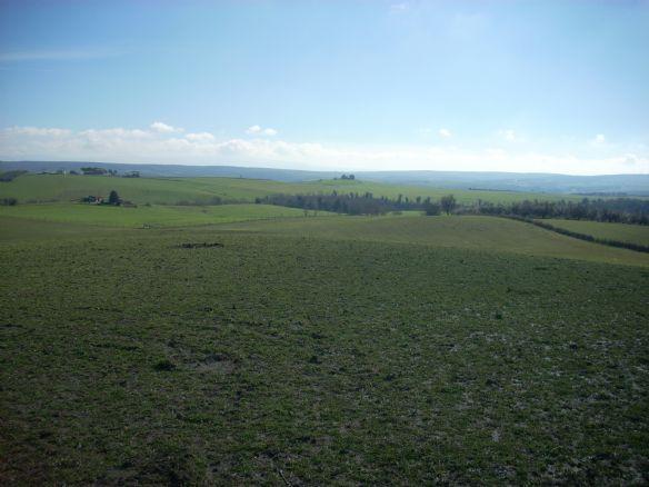 Terreno Agricolo a Tuscania - 01, terreno agricolo vendita tuscania