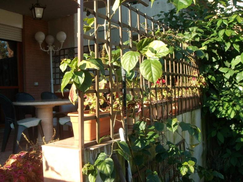 foto 1 di Appartamento con Giardino Roma torrino - Rif. 157